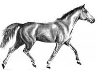 1806–1818: